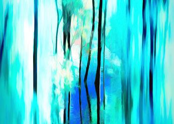 חלום ביער