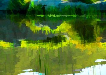 חורף ירוק