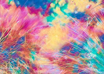 מחול הצבעים