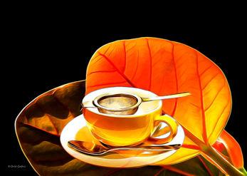 זמן תה