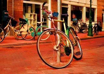 אופניים בשלל צבעים