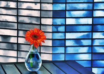 Urban flowering