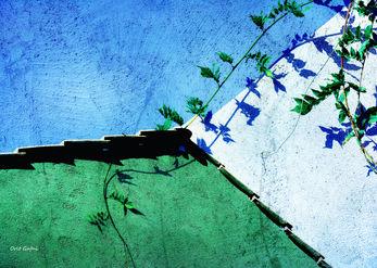 ירוק מדבר עם כחול