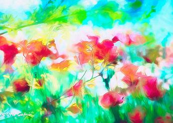 אביב וסתיו
