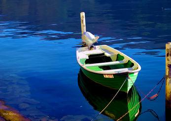 קישוט ירוק לאגם כחול
