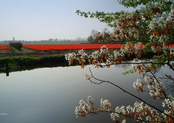 מעבר לנהר