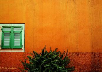 A corner in Provence